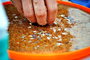 Sandy Fingers W